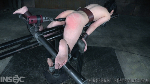 Fucked with toys in bondage video 2